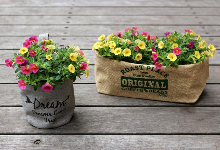 すぐに楽にお花を楽しめる混色花苗「すぐ楽シリーズ」が販売スタートしました!