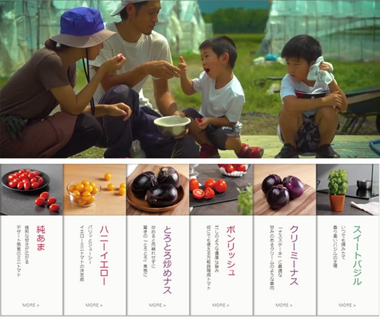 「本気野菜青果」のサイトがリニューアルしました!