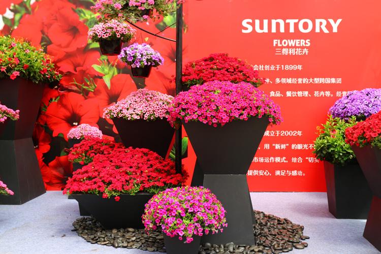 中国・北京の「第六回北京市花木春展示会」にサントリーフラワーズも参加いたしました。