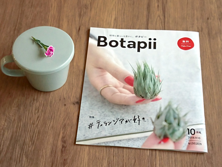 秋植えの花苗「ミーテ」がBotapii[ボタピー] by LOVEGREEN 2018年10月号に掲載されました。