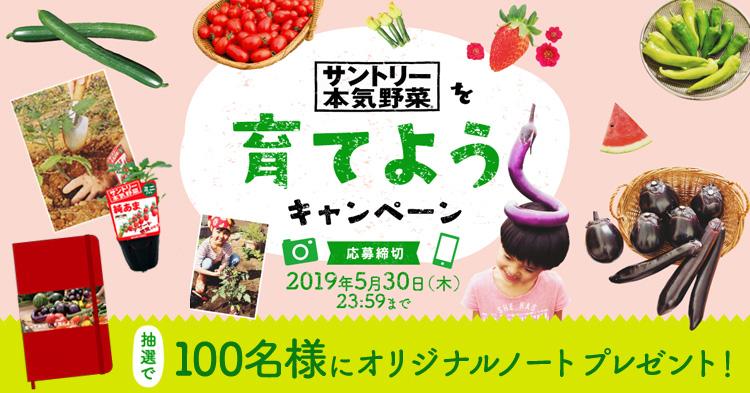 抽選で100名にプレゼント!「本気野菜を育てようキャンペーン」がスタート!