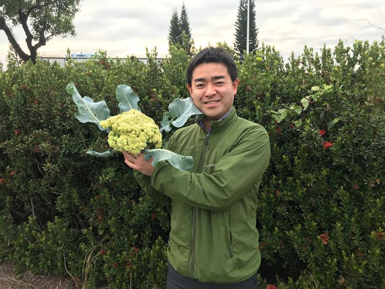 本気野菜苗「濃い花野菜」が販売スタートしました!